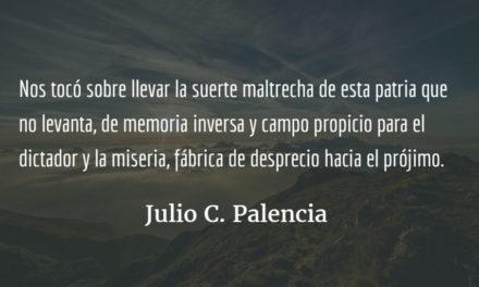 Carta para mi hermana, de Julio C. Palencia