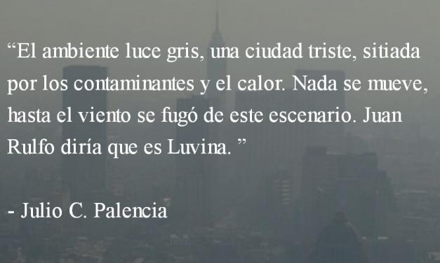 Cuando mueran los pájaros. Julio C. Palencia.