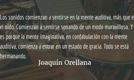 La magia sonora de Joaquín Orellana. Marcela Gereda.
