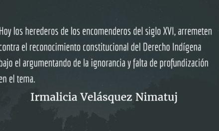 ¿Qué hacer? ¿Qué camino tomar? XII. Irmalicia Velásquez Nimatuj.