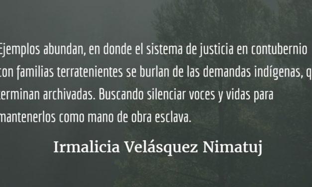 Rodrigo Tot obtiene el Nobel Verde. Irmalicia Velásquez Nimatuj.