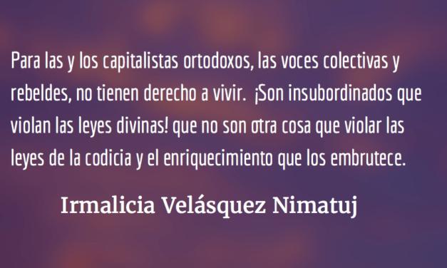 El golpe de la madre naturaleza. Irmalicia Velásquez Nimatuj.