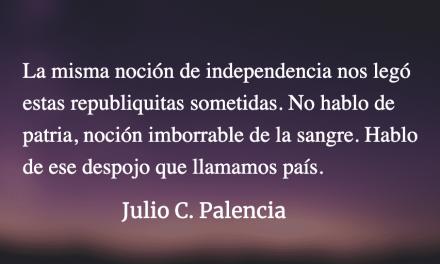 La independencia patria y la libertad de usted, de Julio C. Palencia