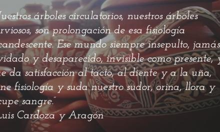 México, de cerca, de lejos… De Luis Cardoza y Aragón para André Breton