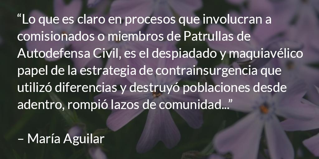 El maquiavélico papel de la estrategia de contrainsurgencia. María Aguilar.