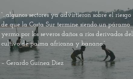 Camino de vuelta. Gerardo Guinea Diez.