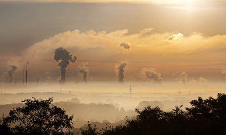 Economía enferma: planeta enfermo. Marcelo Colussi.