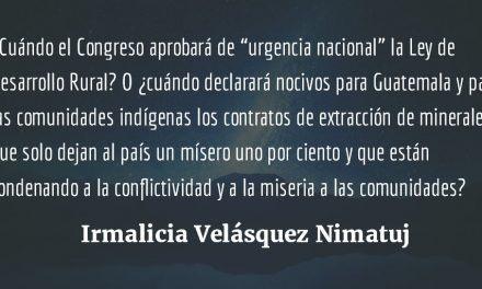 Acciones culturalistas. Irmalicia Velásquez Nimatuj.