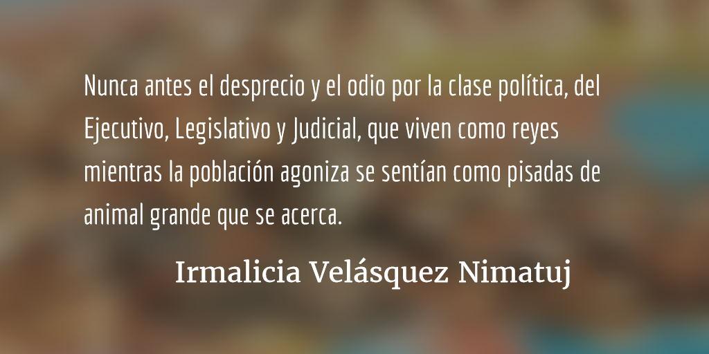 En medio del caos. Irmalicia Velásquez Nimatuj.