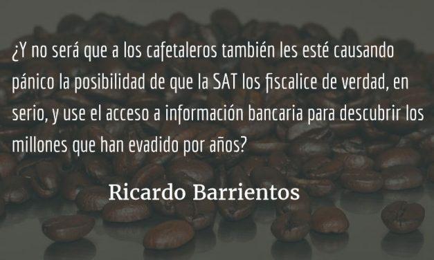 Ganaderos y cafetaleros: ¡evasores descarados! Ricardo Barrientos