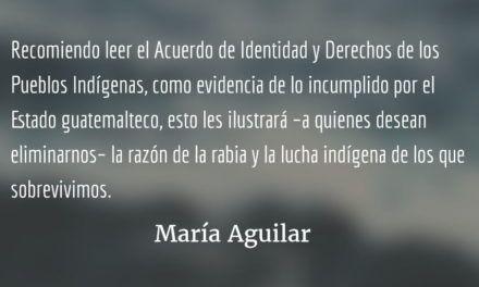 Pueblos indígenas y la paz en Guatemala (III). María Aguilar.