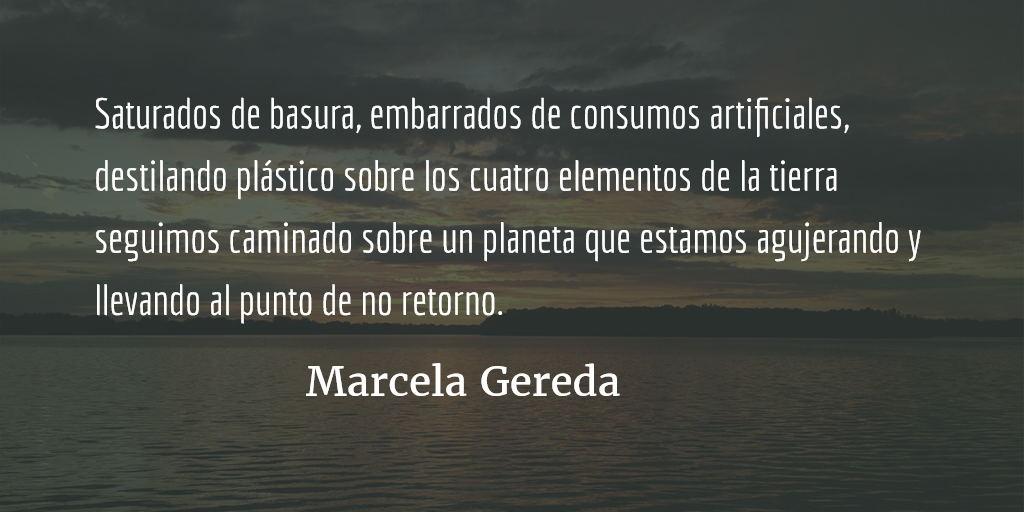 Vidas hechas de plástico. Marcela Gereda.