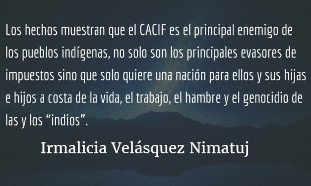 ¿Qué hacer? ¿Qué camino tomar? (II). Irmalicia Velásquez Nimatuj.