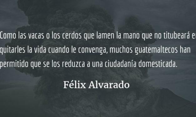Ciudadanía domesticada. Félix Alvarado.