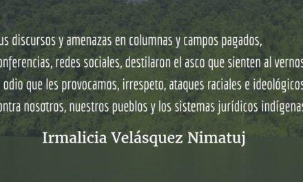 ¿Qué hacer? ¿Qué camino tomar? (XIV y final) Irmalicia Velásquez Nimatuj