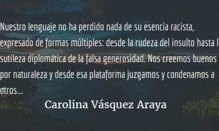 Un llamado a la cordura. Carolina Vásquez Araya.
