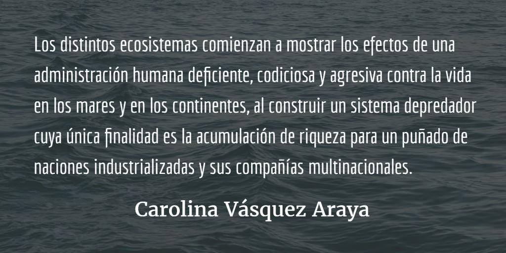 La Tierra y sus habitantes. Carolina Vásquez Araya.