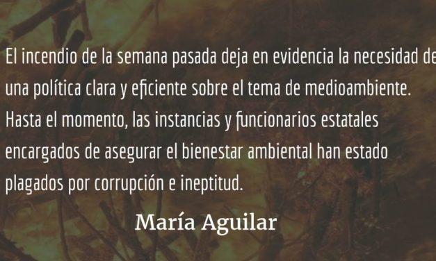 Arrasar la tierra. María Aguilar.