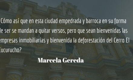 ¿Quién puede negarse a la poesía? Marcela Gereda