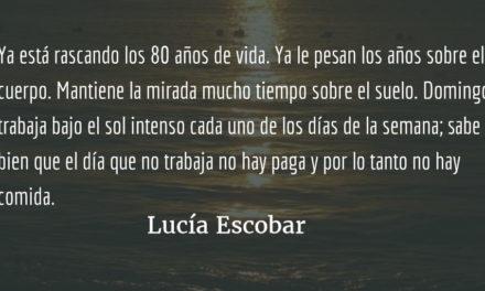 Domingo sin domingo. Lucía Escobar.