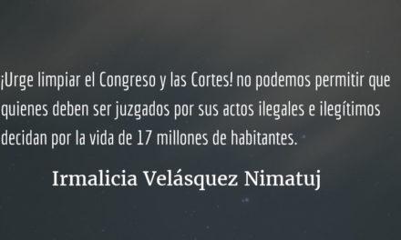 Ernesto Galdámez el retrato del Congreso. Irmalicia Velásquez Nimatuj.