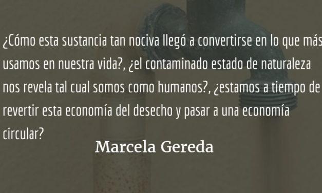 Plástico: ¿amigo o enemigo? Marcela Gereda