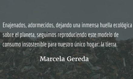 Generar una alternativa al mundo de hoy. Marcela Gereda.