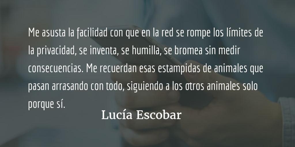Entre la @ y el #. Lucía Escobar.