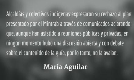 Reglamentando la consulta previa. María Aguilar.