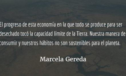 Economía del delito y del saqueo. Marcela Gereda.