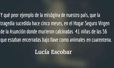 El país que odia a las mujeres. Lucía Escobar.