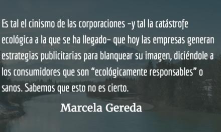 Manipulación publicitaria. Marcela Gereda.