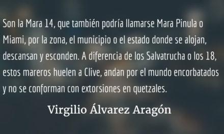 Con asfalto hasta en los dientes. Virgilio Álvarez Aragón.
