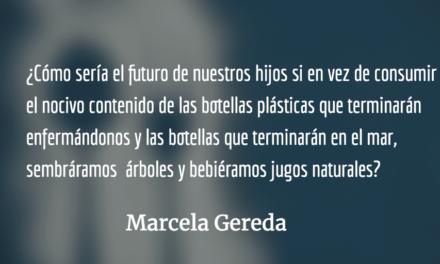 Necesidad de regular logotipos en bebidas azucaradas. Marcela Gereda.