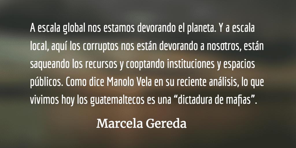 ¿Hacia el abismo? Marcela Gereda