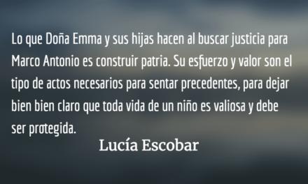 Tanto cuchillo para cortar una flor. Lucía Escobar.