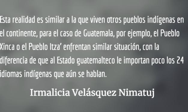 Ucuañuca: la voz de los Taushiro. Irmalicia Velásquez Nimatuj.