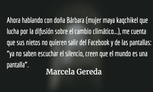 El mundo desde una pantalla. Marcela Gereda.