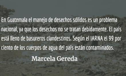Hacernos más ecológicos. Marcela Gereda.