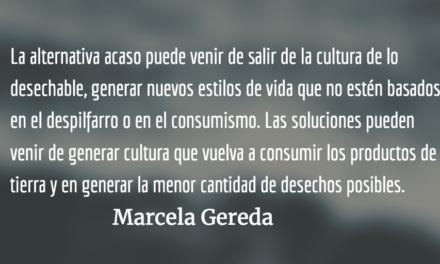 ¿Por qué hacernos amigos de la sostenibilidad? Marcela Gereda