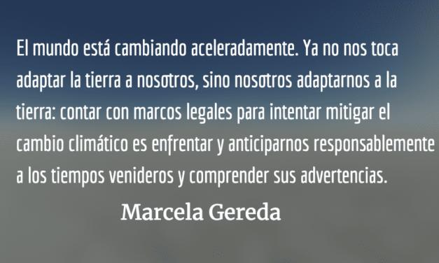 Ley de impuesto por emisión de CO2. Marcela Gereda.