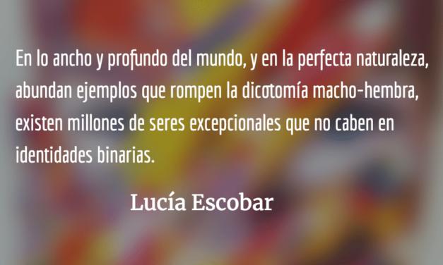 El fin de un mundo binario. Lucía Escobar.