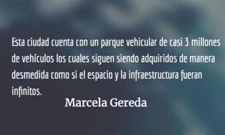 Convertir basureros en parques. Marcela Gereda.