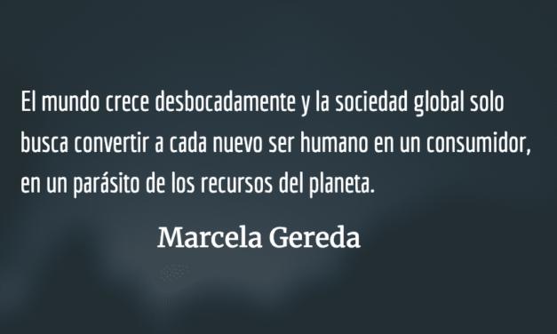 Más náufragos que navegantes. Marcela Gereda.