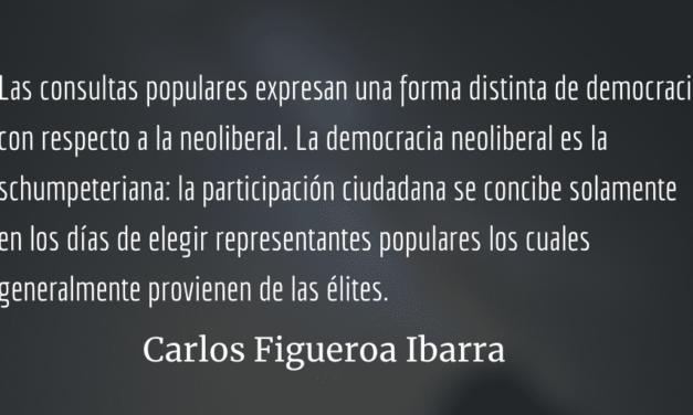 Democracia neoliberal, democracia participativa. Carlos Figueroa Ibarra.