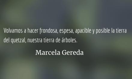 Primera Feria Forestal y Ambiental en La Antigua. Marcela Gereda.