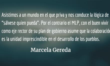 MLP: la colaboración sobre la competencia