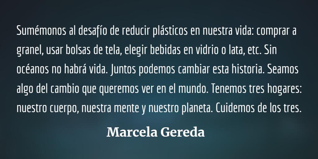 Día mundial de la lógica: reducir plásticos